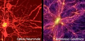galassia-neurone